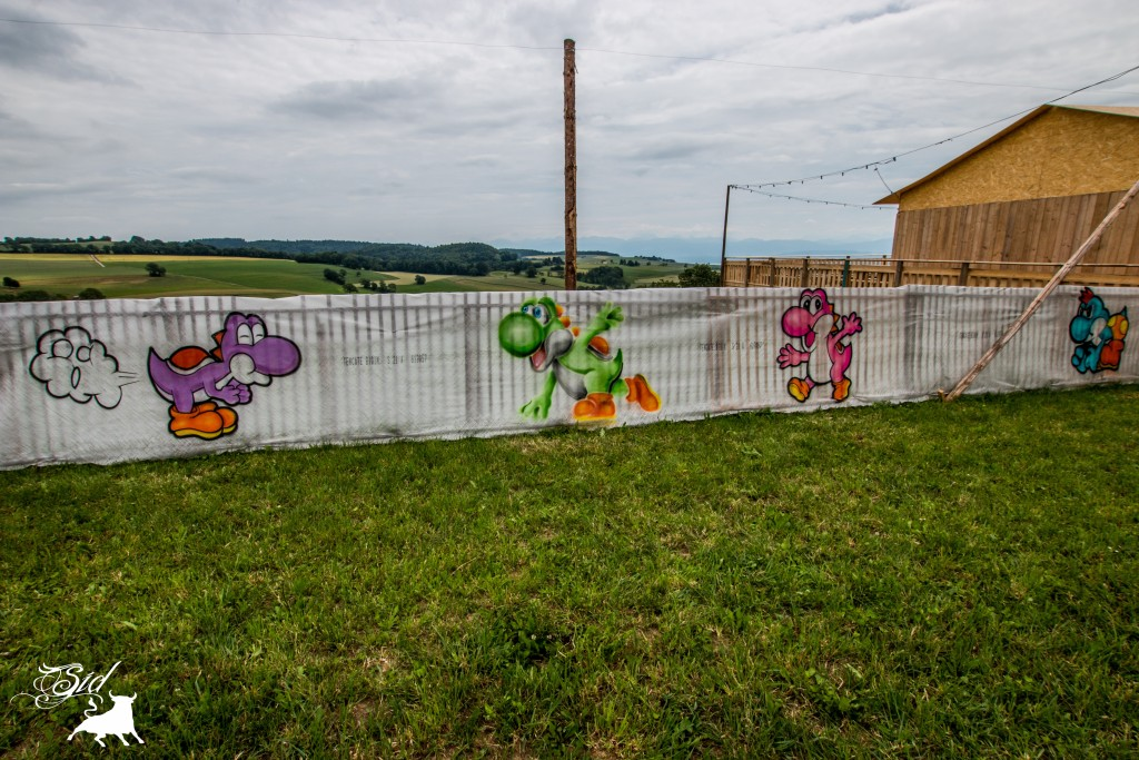 Déco graff spray super mario bros evolution art pour le 70 ème giron 2015 de marchissy fjdn Yoshi
